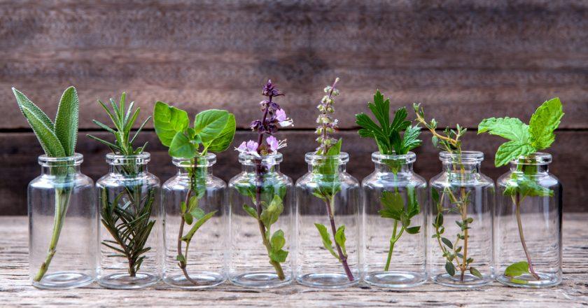 přírodní léky